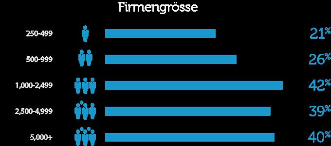 firmengrosse_de