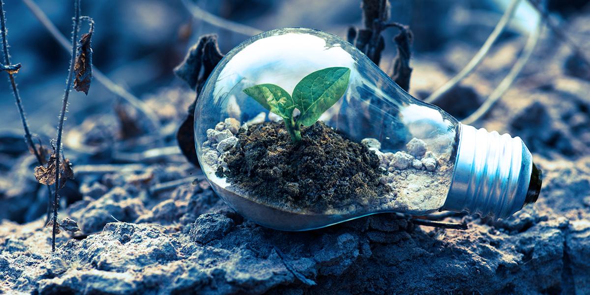 hållbar framtid
