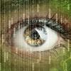 audiovisual experiencia usuario televidente